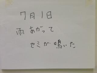 IMG_6495