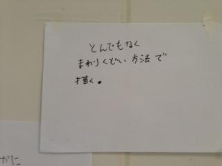 IMG_6639